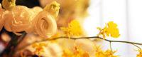 社葬やお別れの会を厳かに演出するバラのフラワーアレンジ