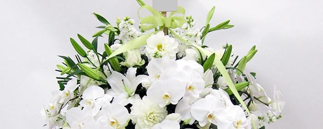送り主の名前の札を立てた胡蝶蘭やカサブランカなどの枕花