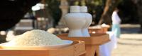 神道式の葬儀「神葬祭」の流れと神式の社葬